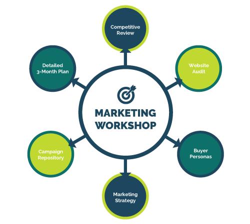 Kiwi-Process-Marketing